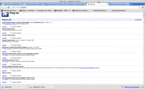 Screenshot-Plug-ins - Google Chrome